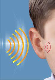 Audisin Maxi Ear Sound- como tomar - como usar - funciona - como aplicar